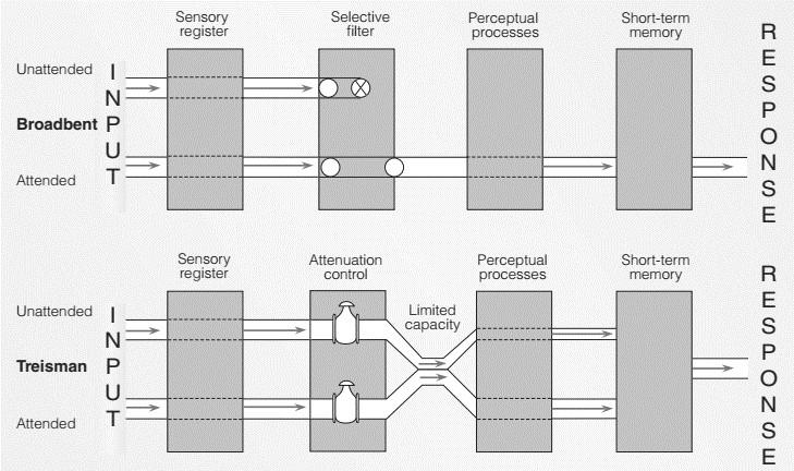 Attenuation Model