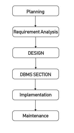 You are currently viewing Phases In Database Development Process