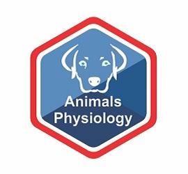 Animals Physiology